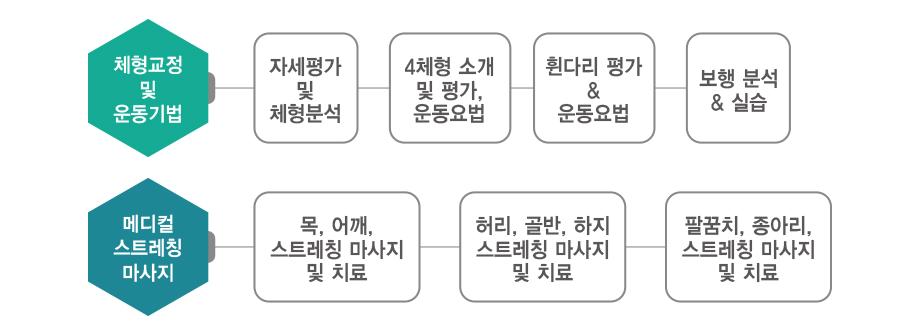 채용페이지_교육프로그램_체형교정_그래프(920px).jpg